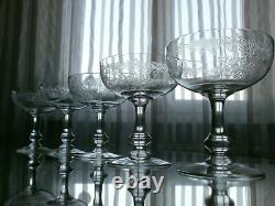 5 Anciennes Coupes A Champagne Cristal St Louis Modele Massenet Catalogue 1930
