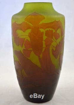 Ancien Vase En Pate De Verre Degage A L'acide Signe D'argental Orchidée