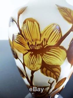 Art Nouveau /ancienne Vase Pte De Verre Dégagé L'acide Signé Era Daum Galle