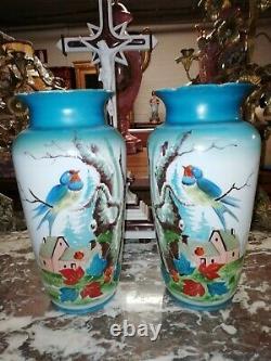 Paire de vases ancien en opaline décor aux oiseaux